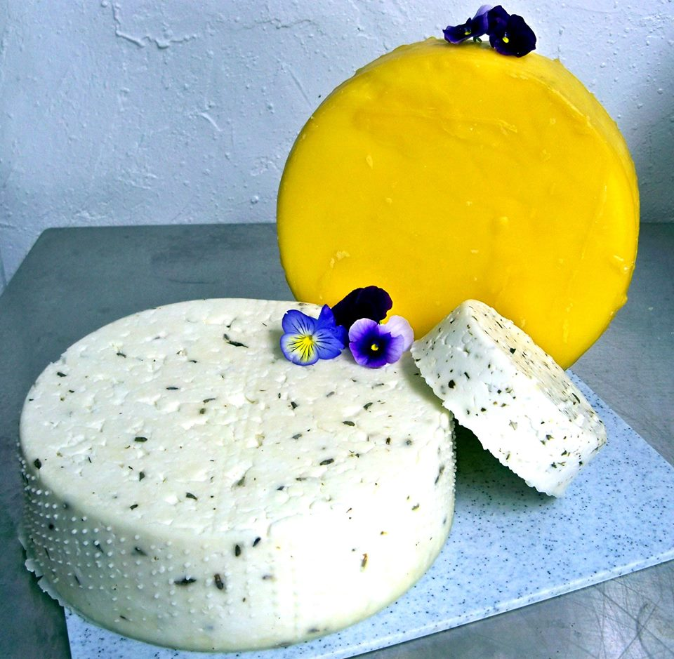 Mountain Farm Cheese