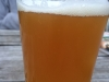 Pisgah Greybeard IPA on Cycle to Farm Bike Tour