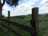 Fence-View