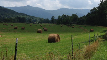 Visit stunning views in North Carolina while cycling from inn to inn.