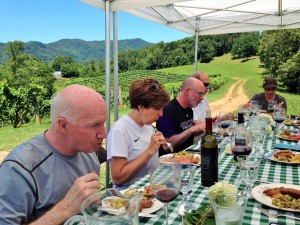 This tour culminated with a Al Fresco lunch in a vineyard