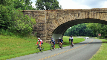 Passing under one of the iconic parkway bridges near the VA/NC state line.