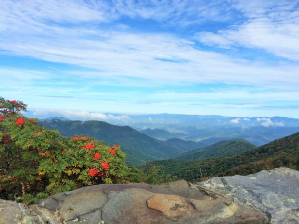 View from Craggy Garden Visitor Center